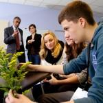 Die Schüler erstellen ein virtuelles Herbarium